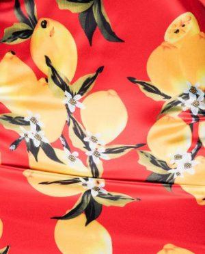 Red Lemon Print Dress