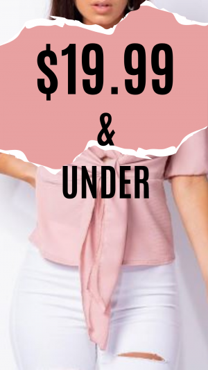 19.99 SALE AND UNDER